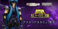 Saint Cloth Myth EX Aquarius Camus Surplice